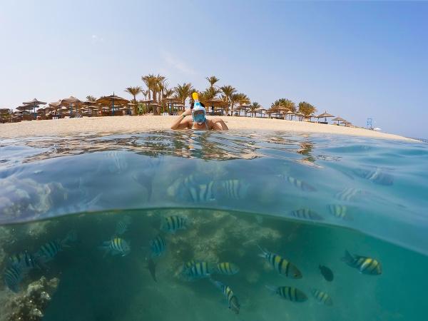 Šnorchlovanie v Egypte