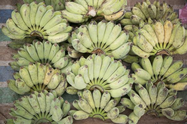 Banány na trhu v