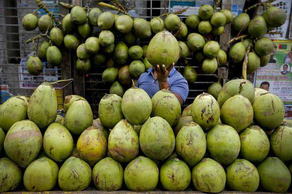 Kokosy na trhu v