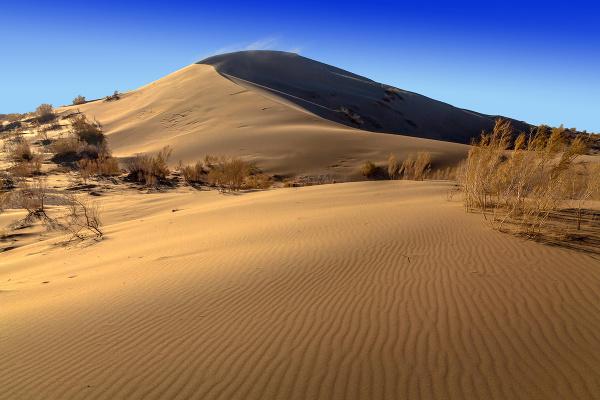 Spievajúce pieskové duny
