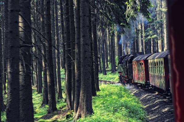 Národný park Harz
