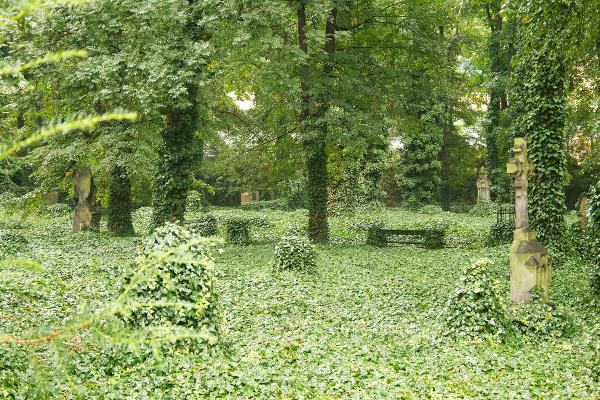 Jeden z pražských cintorínov