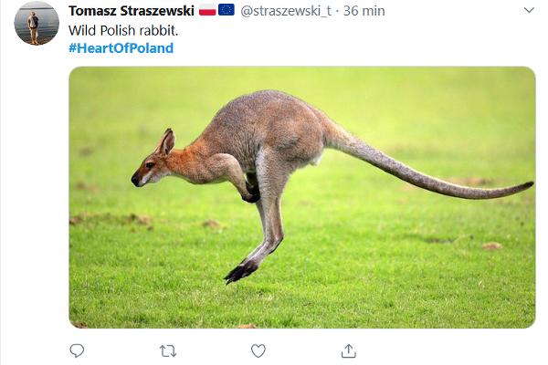 Poľsko je všetkým na