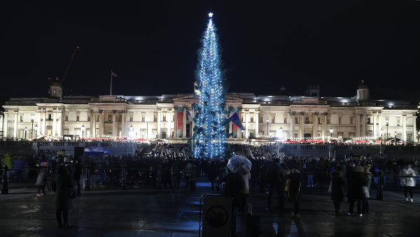 Svetlá rozsvieteného vianočného stromu