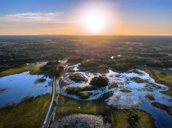 Pantanal, Brazília