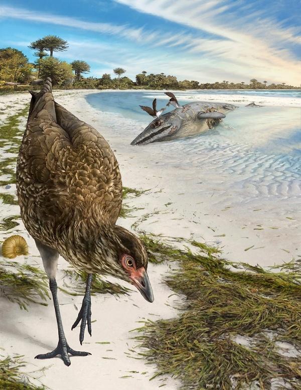 Vedci objavili fosíliu, ktorá