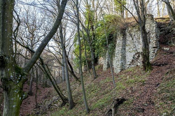 Zrúcanina hradu Biely Kameň