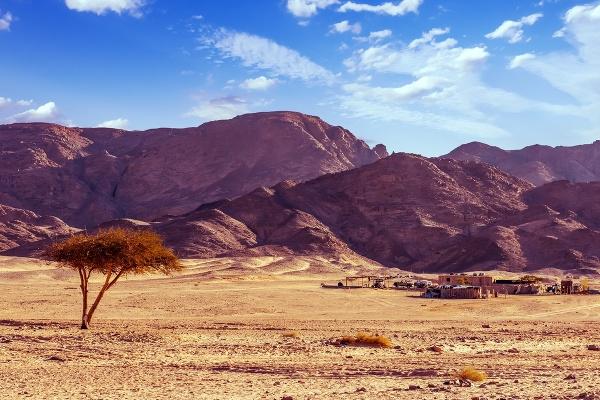 Beduínska dedina