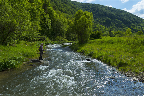 Rieka Torysa v Levočských