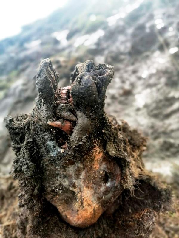 Múmia jaskynného medveďa