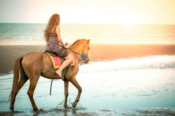 Jazda na koňoch na