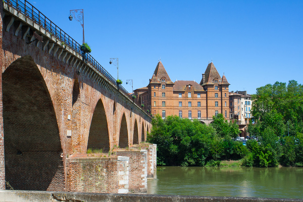 Ingres, Montauban