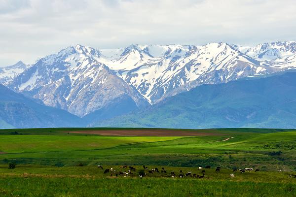 Prírodná rezervácia Aksu Zhabagly