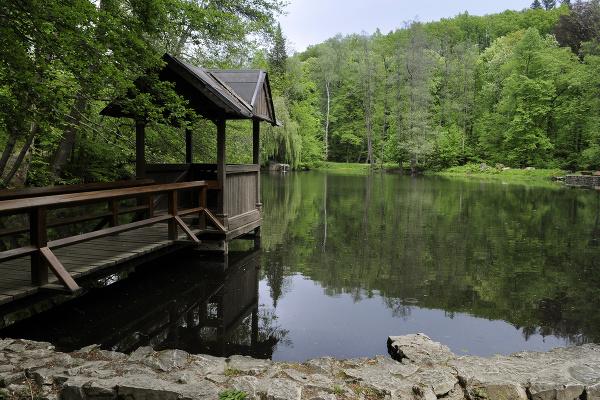 Jazero na konci parku