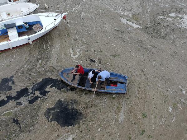 Morský sliz v Turecku