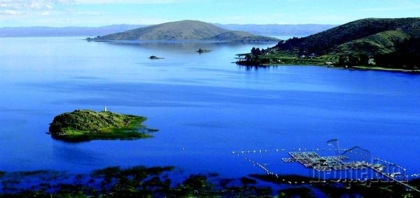 Jazero Titicaca je rodným