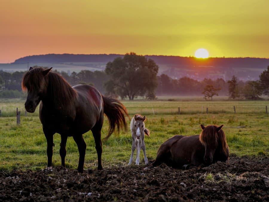 Krásny východ slnka