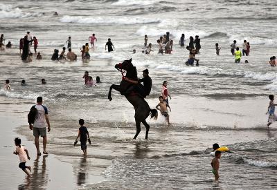 Po nábreží koník beží