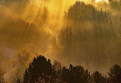 Krása prírody