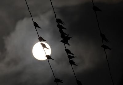 Že nočná fotografia s mesiacom? Ale kdeže