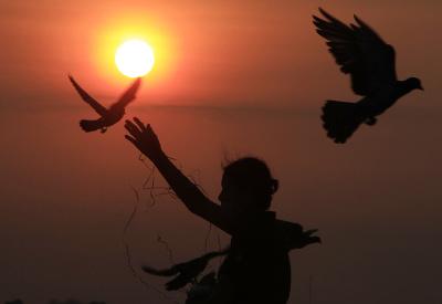 Papajte, milé holúbky