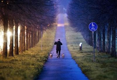 Ranná prechádzka