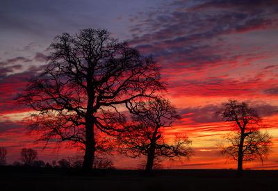 Obloha sa pýši farbami