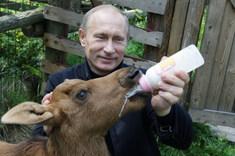 Farmár Vlado