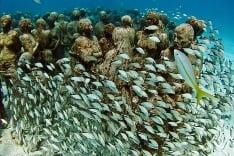 Podmorské múzeum