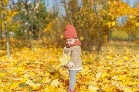Najkrajšia jeseň