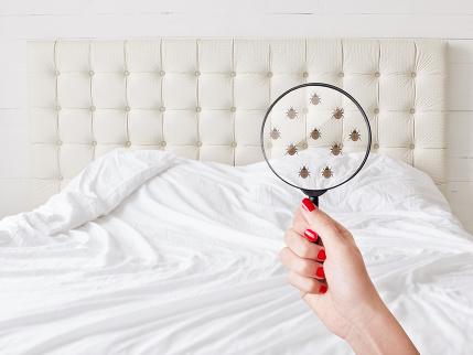 6 bežných vecí, na ktorých by ste určite nemali šetriť