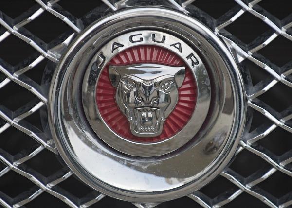 Jaguar chce rozšíriť prevádzku: Prácu tak nájde ešte viac ľudí
