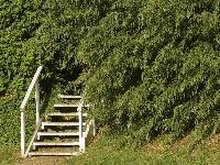 Humor záhradných architektov nepozná