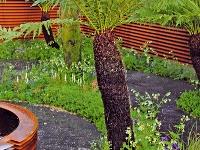Palmy apaprade Vďaka klimatickým zmenám