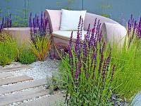 Záhradná aromaterapia Mnohí súčasní záhradní