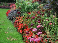 Kvetinové okraje  Kzáhonu patrí