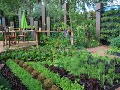 Nevšedná záhrada ako na