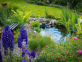 Prírodné jazierko ako súčasť