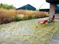 Vyššie trávy atrvalky fyzicky