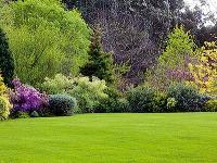 Starostlivosť o trávnik v