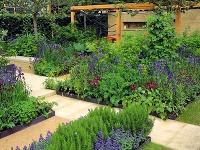 Záhrada ukážkovo spája moderné