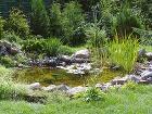 Kjazierkam aumelým vodným plochám