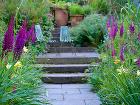 Dažďová záhrada navrhnutá Nigelom