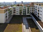 Zelená strecha Eco-Active