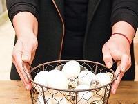 Vyfúknuté vajíčka postupne uložte