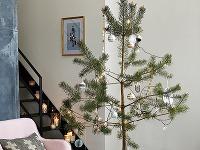 Minimalistické stromčeky vyzdobené len