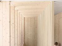 Minimalistický drevodom pre mladú