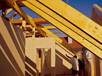 Trvanlivosť dreva a princípy