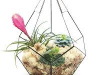 Kvetinové teráriá Vytvorte si