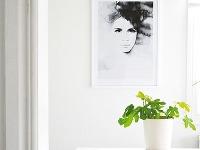 SOFISTIKOVANÁ TAJOMNOSŤ Čiernobiely akvarel